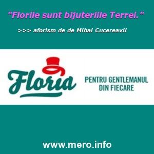florarie și cadouri speciale online