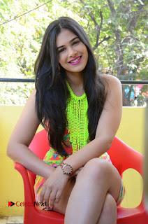 Telugu Actress Prasanna Stills in Short Dress at Inkenti Nuvve Cheppu Press Meet Stills  0158.JPG