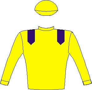 MACDUFF - Horse - South Africa - Yellow, royal blue epaulettes, yel.sleeves & cap