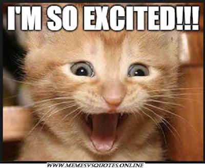 Excited cat memes