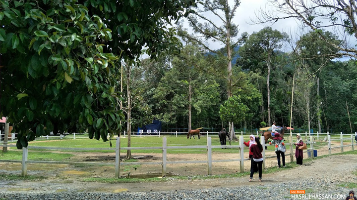 Menunggang Kuda di Disiniland Agrofarm and Resort, Batu Kurau
