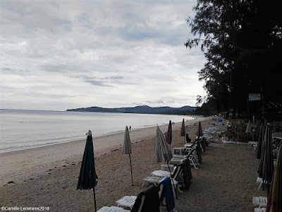 Koh Samui, Thailand weekly weather update; 10th December – 16th December 2018