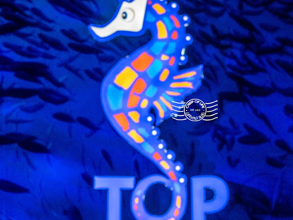 Launching of Boutique Aquarium and Penang Central Market @ The Top, Komtar Penang