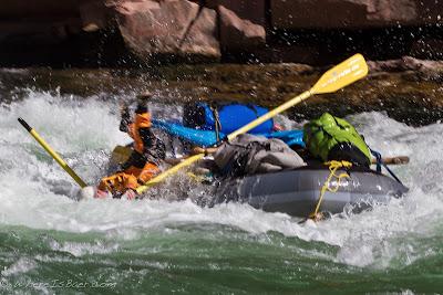 Koreen Padken, taking a dive at House Rock, Grand Canyon of the Colorado, Chris Baer