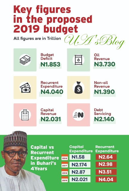 INFOGRAPHIC: Debt servicing surpasses infrastructure spending in 2019 budget