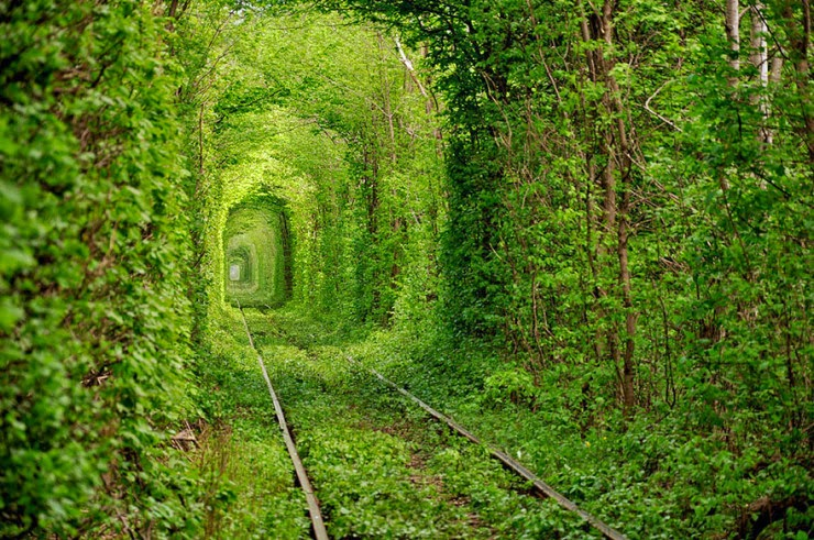 8. Tunnel Of Love, Ukraine - 29 Wonderful Paths