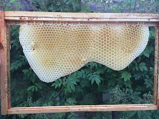 Natural bee comb