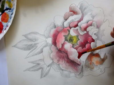 Peony for the Herstory Project