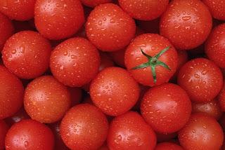 https://2.bp.blogspot.com/-NuMrOj5l2MM/UVcTgbSB4dI/AAAAAAAAABA/G3jol-V9ePc/s1600/tomatoes%252Cred%252Csunlight%252Ctomato%252Cwater-f13b0dde2713cfb67e8318bfe002d398_h.jpg