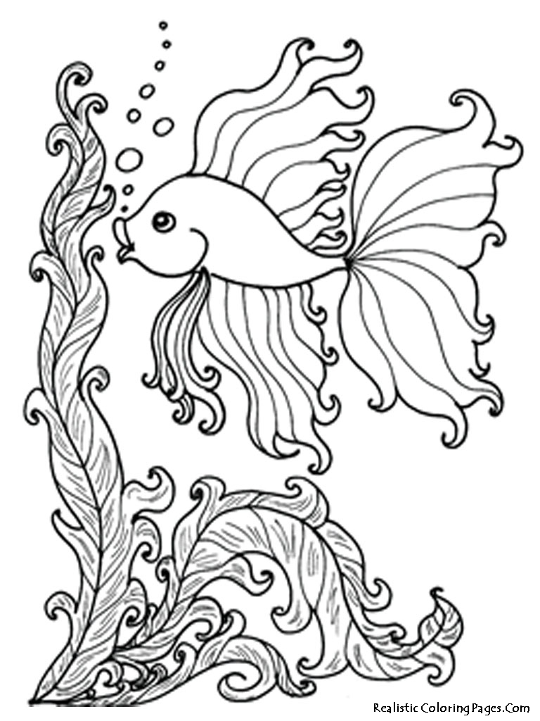 coloring pages fishes - ocean fish coloring pages realistic coloring pages