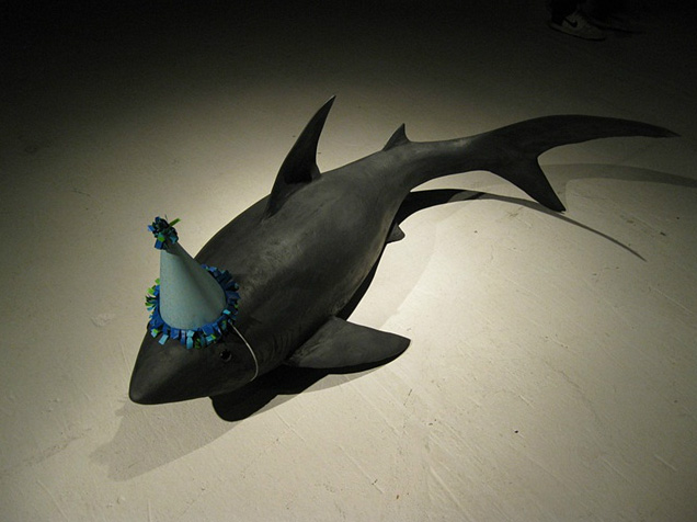 Darla Jackson, shark in party hat