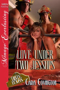 https://www.goodreads.com/book/show/16147979-love-under-two-jessops