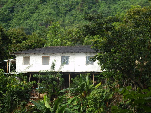things to do in minca colombia