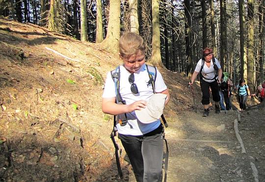 Zielonym szlakiem przez las Suchego Gronia