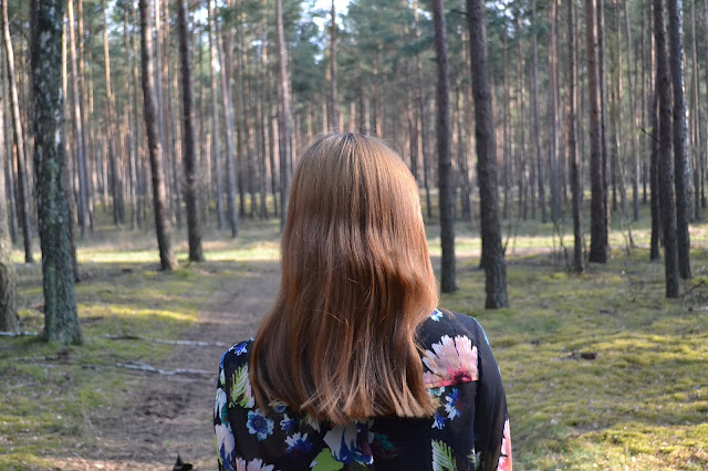 Jak zacząć prawidłową pielęgnację włosów? cz. I  BJUTI CZWARTEK