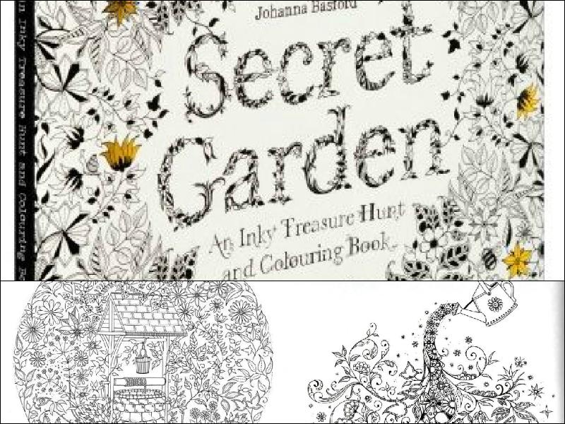 Livro Jardim Secreto Secret Garden Questoes De Opiniao