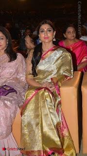 Actress Shriya Saran New Images in Silk Saree at Gautamiputra Satakarni Audio Launch  0022.jpg