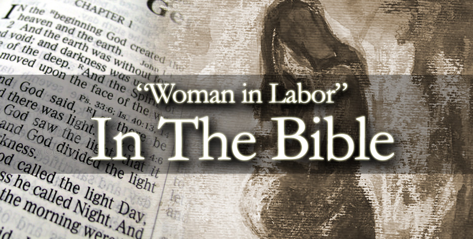 Daughters of Zion : Voices of the Women in the Bible