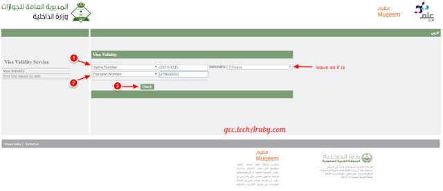 Saudi visa check