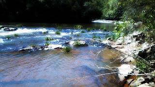 Riacho de Perau do Janeiro, em Arvorezinha