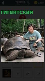 Женщина сидит около гигантской черепахи, которая подняла свою голову и пытается ползти