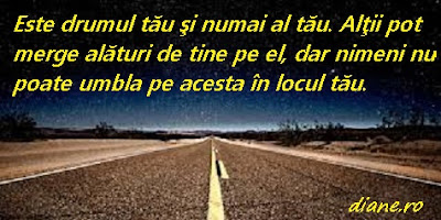 Drumul din vise