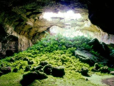 Abandoned Cave Garden Escape Walkthrough
