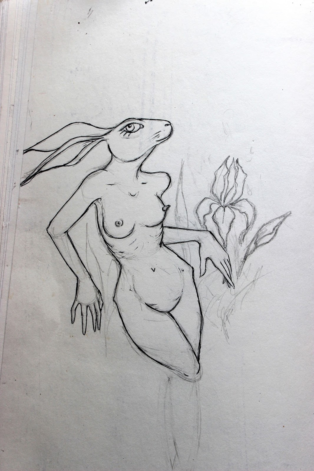 Sketchpad Notebook Sketch Drawing Pencil Rabbit Naked Woman Boobs
