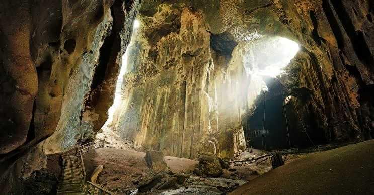 Gomantong Mağaraları'nda çok sayıda yarasa yaşamaktadır, bu yer Gomantong Tepesi'nin içindedir.