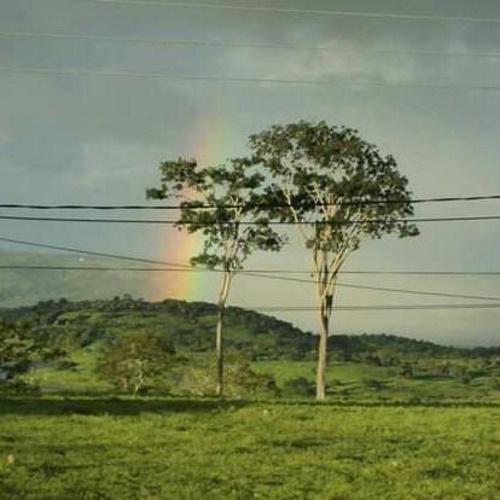 Paisagem com duas árvores que parecem se abraçar; descampado morro, rio e arco-íris no céu. #PraCegoVer