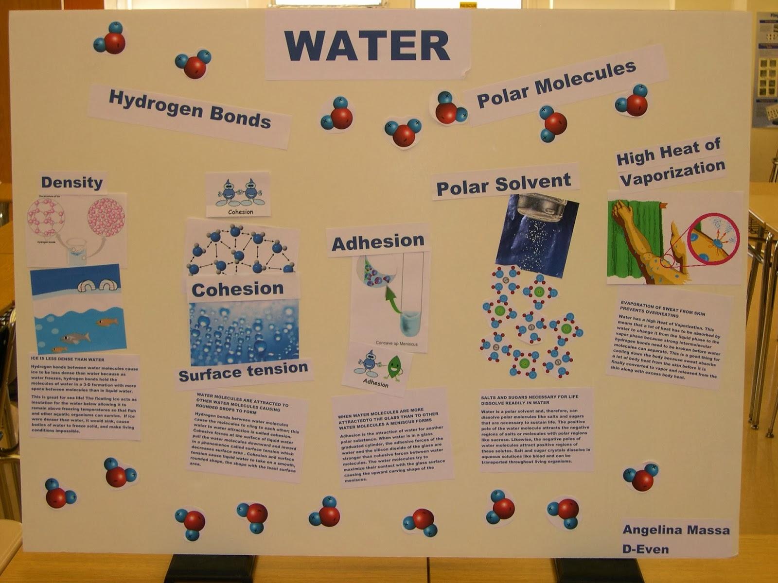 7 best properties of water biology images on pinterest ap