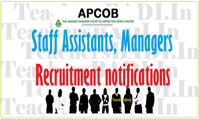 APCOB Staff Assistants, Managers Recruitment 2019 last date 19/09/2019