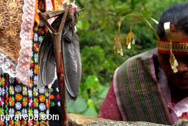 Penti di Wae Rebo Manggarai - Flores