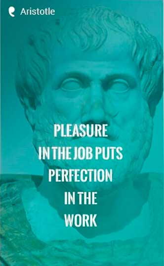"""Pleasure in the job puts perfection in the work."" —Aristotle Quote"