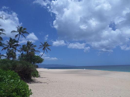 pipeline praia havai