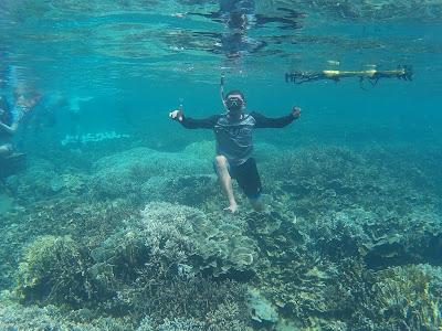 trumbu karang yang ada di sekitar pulau pahawang lampung