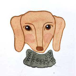 Dachshund illustration in watercolor with dip pen details - by Amy Lamp