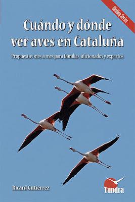 Cuándo y dónde ver aves en Cataluña