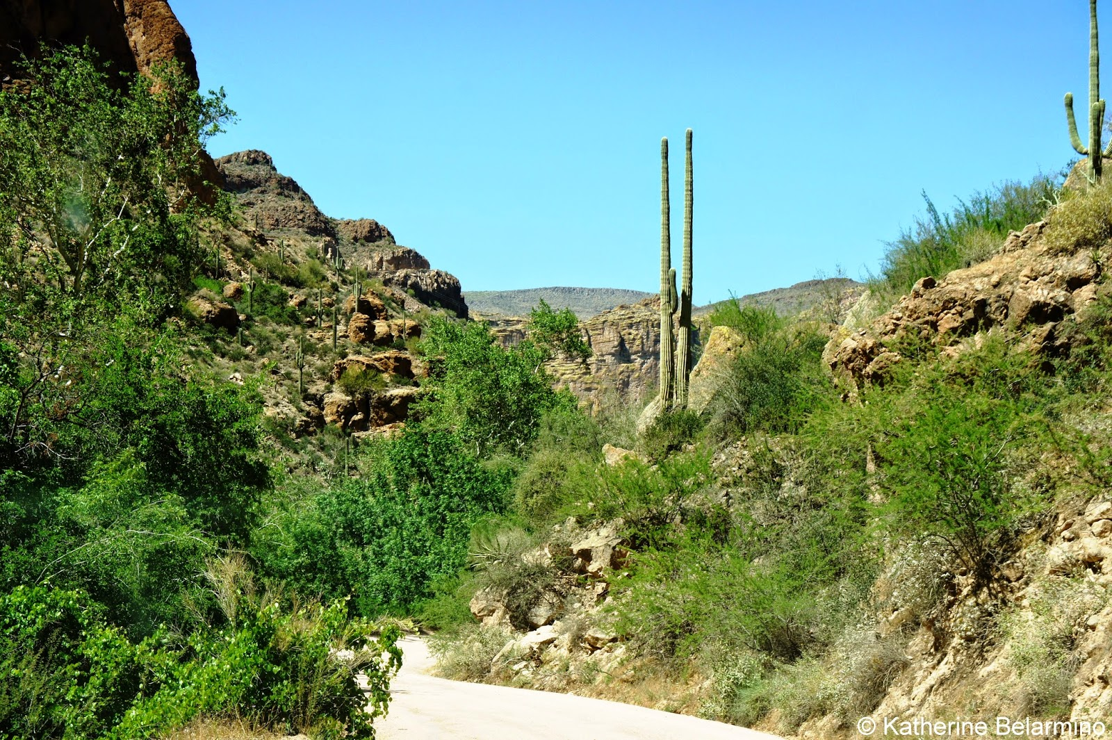 Driving the Scenic Apache Trail | Travel the World