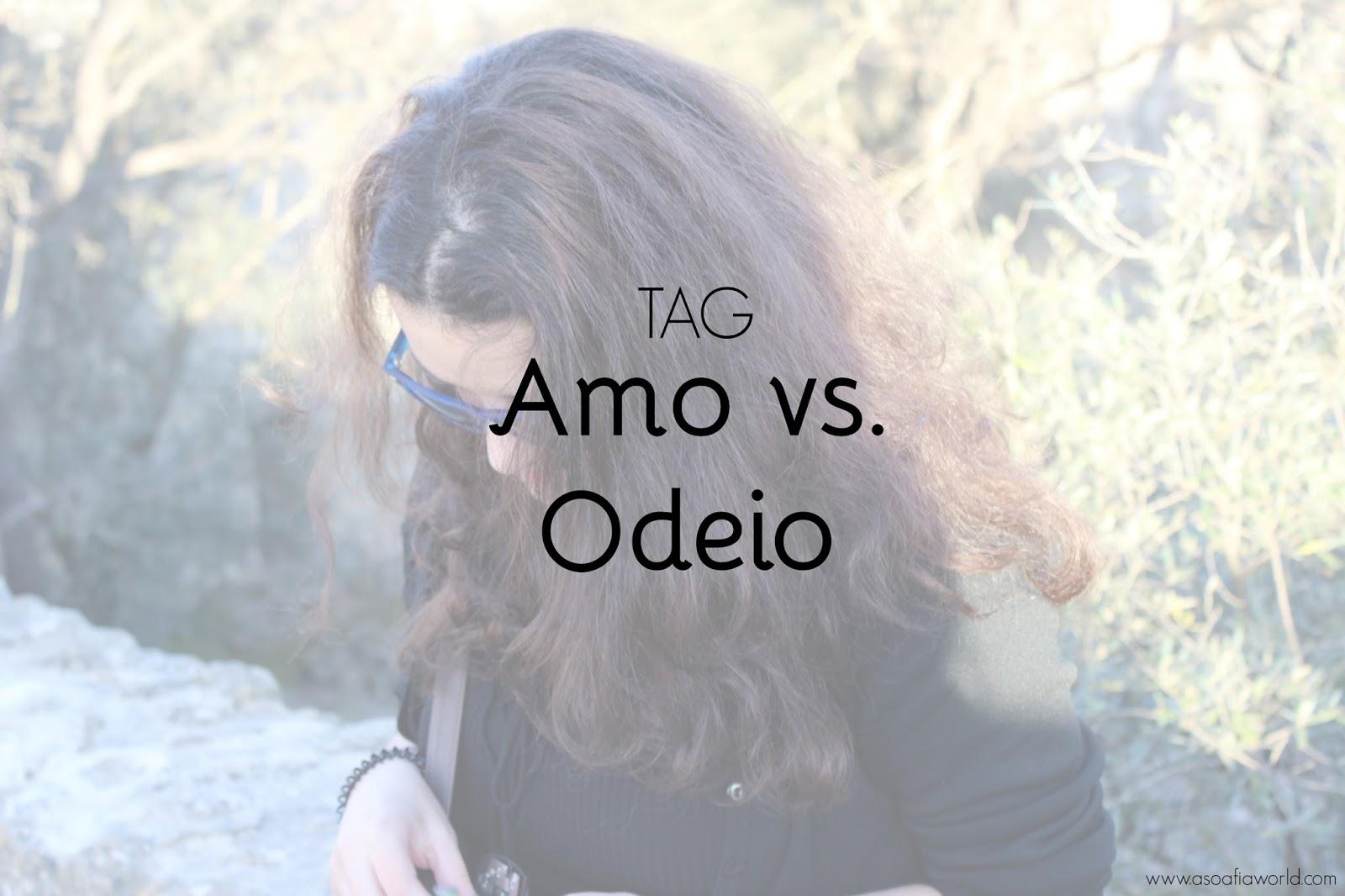 TAG: amo vs. odeio