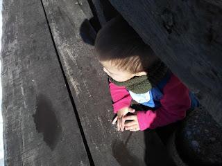niño en la madera