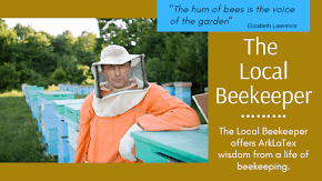 Six things I get asked the most about honey bees: The Local Beekeeper
