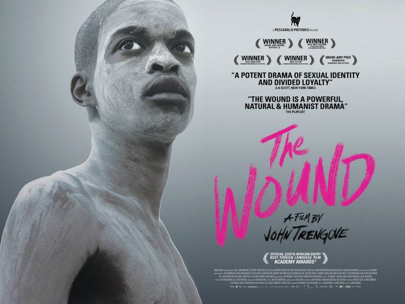 the wound film poster