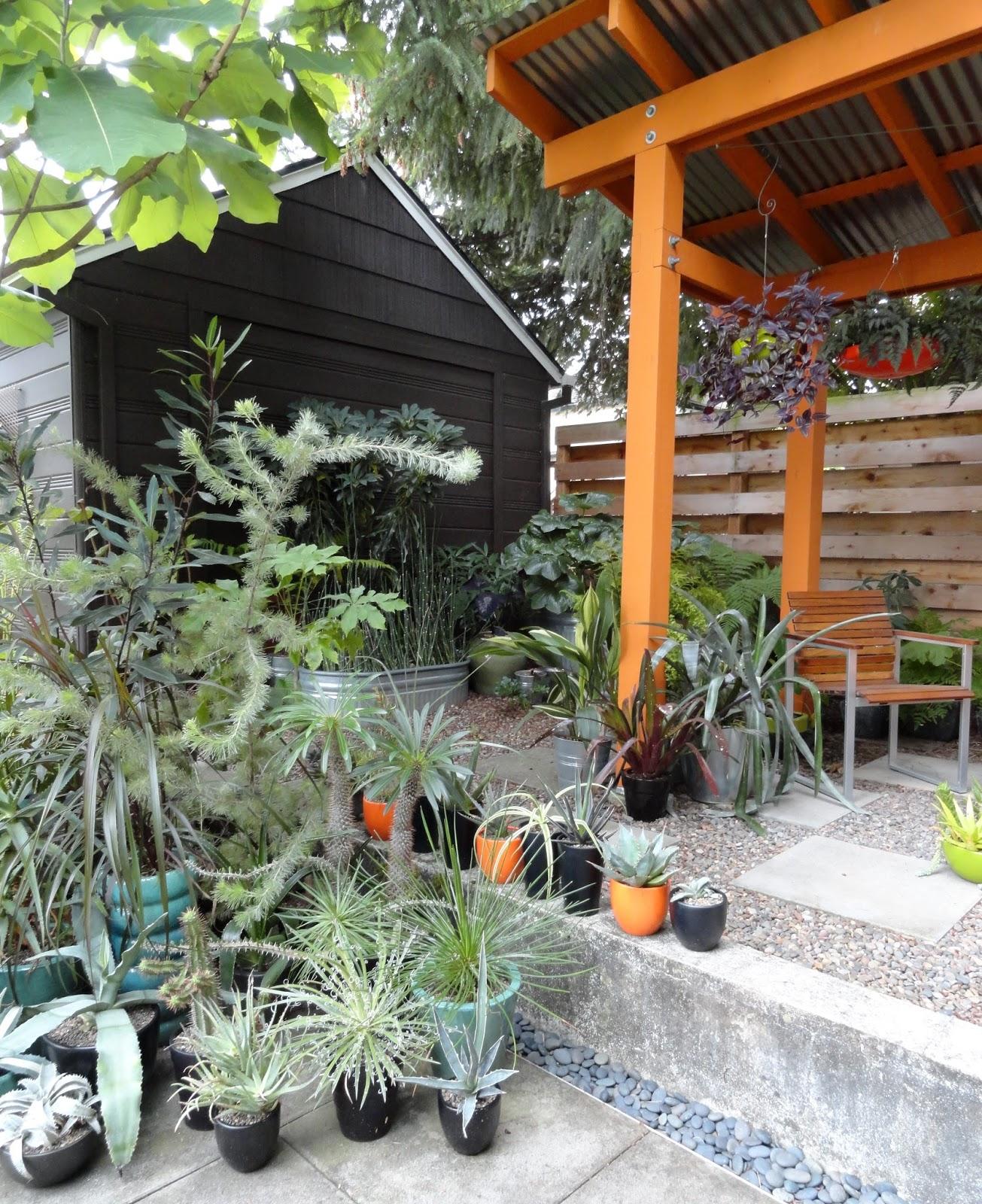 danger garden then and now 2005 2016