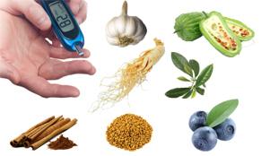 สมุนไพรรักษาโรค เบาหวาน สรรพคุณ ประโยชน์ โทษ หลีกเลี่ยงผลข้างเคียง แคปซูล ราคาถูก