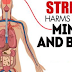 How Stress Harms Your Mind and Body