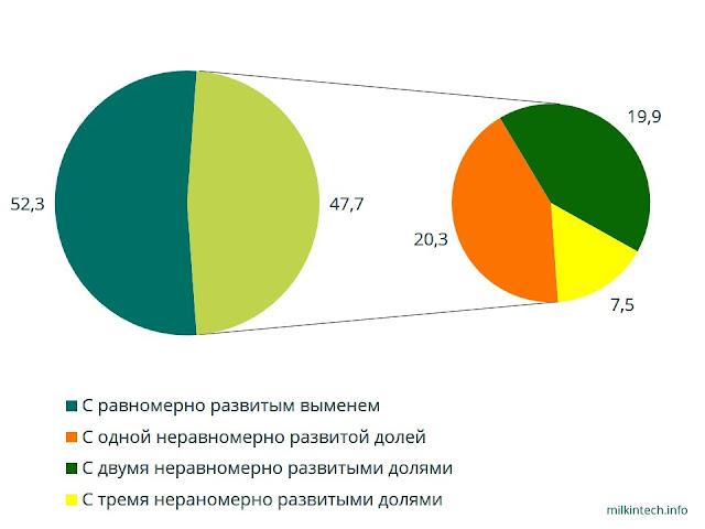 47,7% коров имеют неравномерно развитое вымя