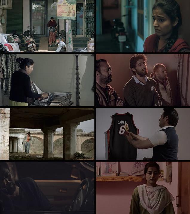 Qissa Panjab 2015 Punjabi 480p DVDRip 300mb
