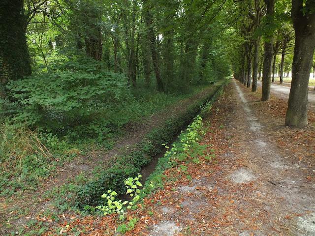 jardines y bosques de Fontainbleau