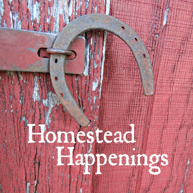 What's new on the homestead.